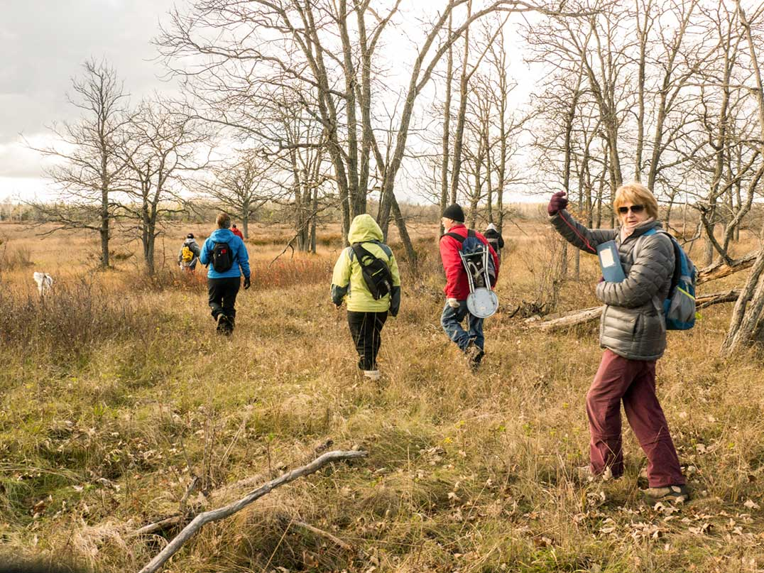 Veronika Bingaman, trail guide, waves her compass as the Elemental Excursions group heads across the savannah bordered by bur oaks, a protected landscape of the Nature Conservancy of Canada.
