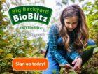 Backyard-BioBlitz—Logo