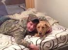 Cody and Duke blasto