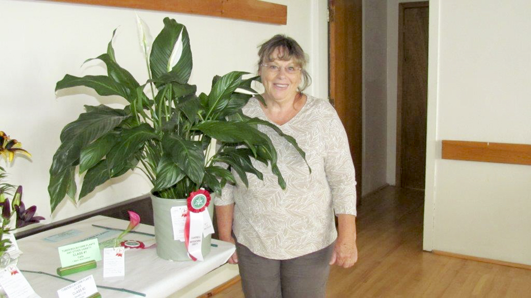 Evelyn Russell-Baehr took home the winning award for her  beautiful peace lily plant.