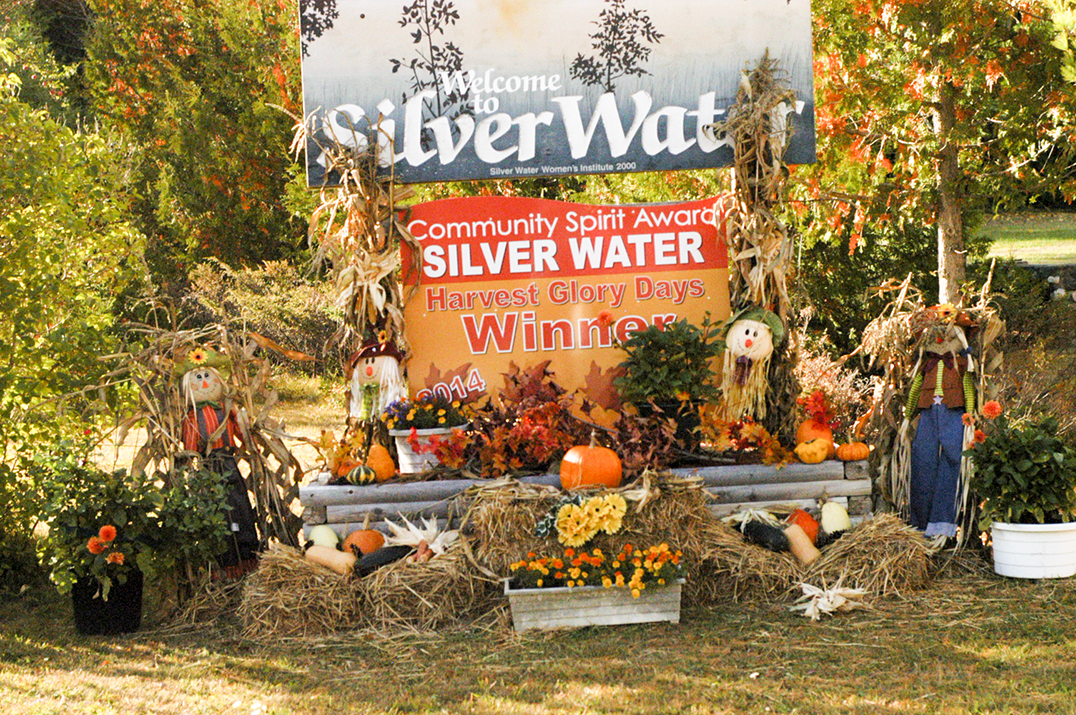 HGD Silver Water